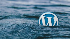 WordPress Hosting: the Good, the Bad and the Ugly